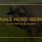 Il maiale nero iberico
